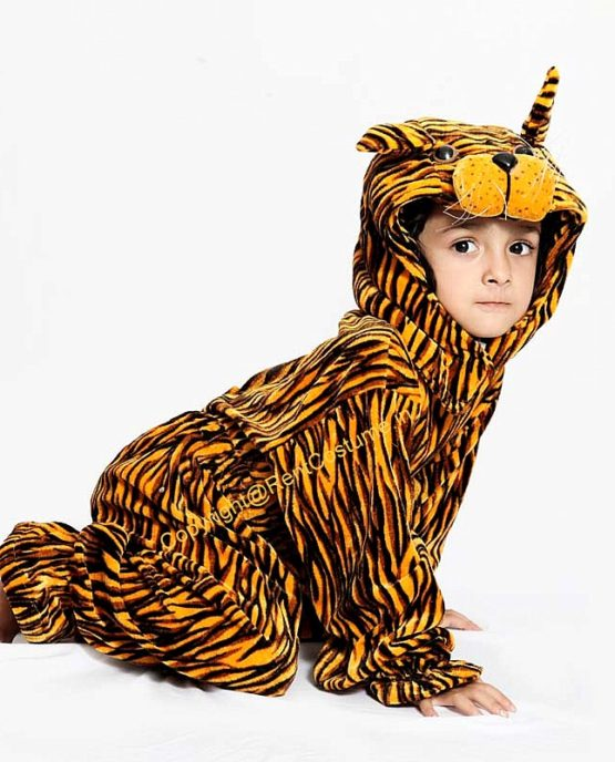 Fancy-Tiger-Animal-dress-for-Kids