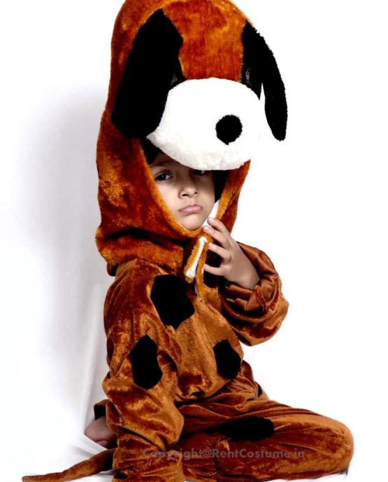 Dog-Fancy-Dress-for-Kids