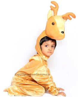 Fancy-Animal-Costume-for-Kids