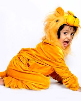 Lion-Fancy-Animal-Costume-for-Kids