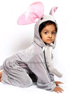 Kids-Fancy-dress-for-animals
