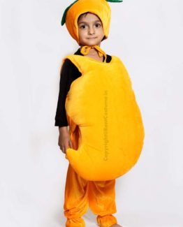 Mango-Fancy-Dress-for-Kids