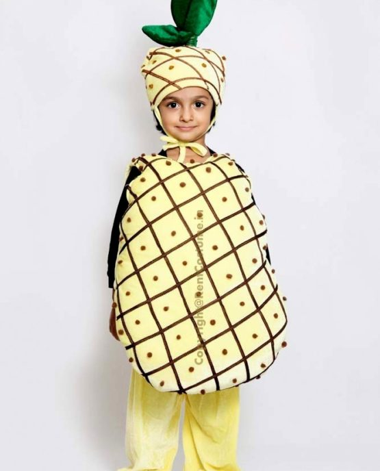 Pineapple-Fancy-Animal-Costume-for-Kids