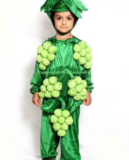 Grapes-Fancy-Dress-for-Kids