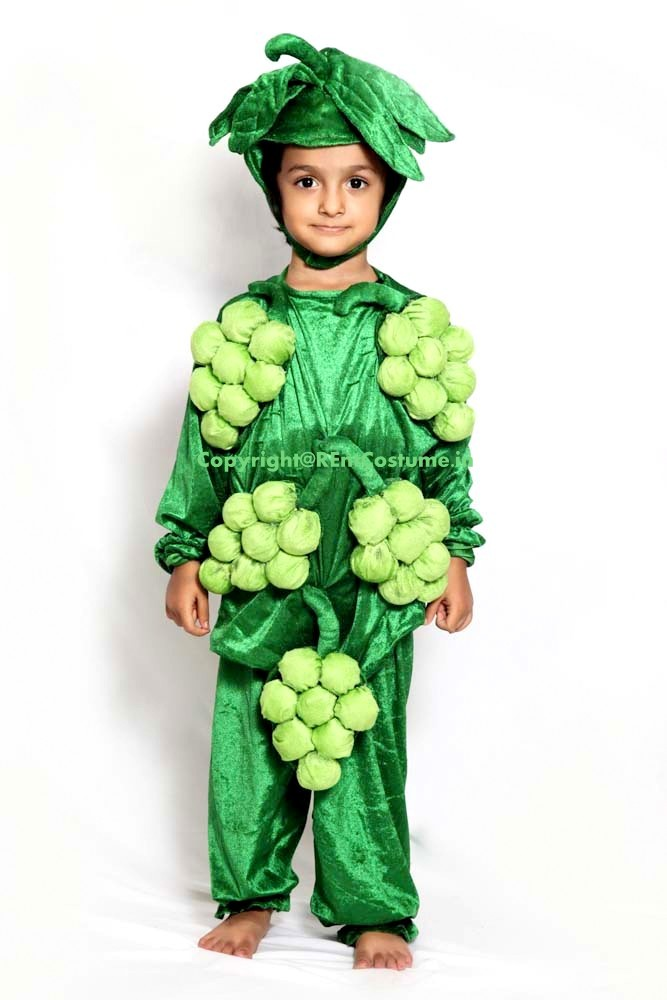 c91106a94c0502 Grapes Fancy Dress for Kids (2-7 Yrs) - RentCostume.in