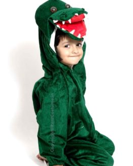 Crocodile-Fancy-Dress-for-Kids