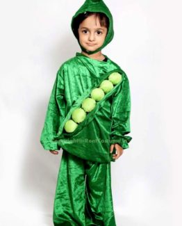 Peas-Fancy-Dress-for-Kids