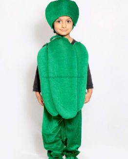 Capsicum-Fancy-Animal-Costume-for-Kids
