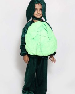 Cabbage-Fancy-Dress-for-Kids