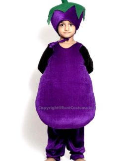 Brinjal-Fancy-Animal-Costume-for-Kids
