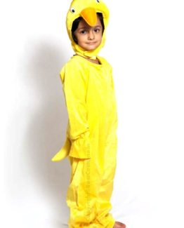 Chicken-Fancy-Animal-Costume-for-Kids