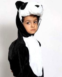 Panda-Fancy-Dress-For-Kids