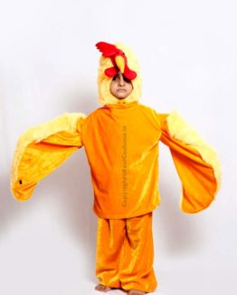 Cock-Fancy-Dress-for-Kids