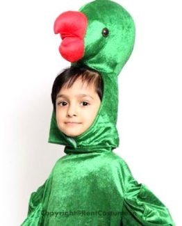 Parrot-Fancy-Dress-for-Kids