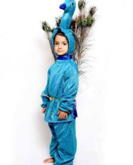Peacock-Fancy-Dress-for-Kids