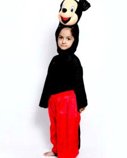 MickeyMouse-Fancy-Animal-Costume-for-Kids