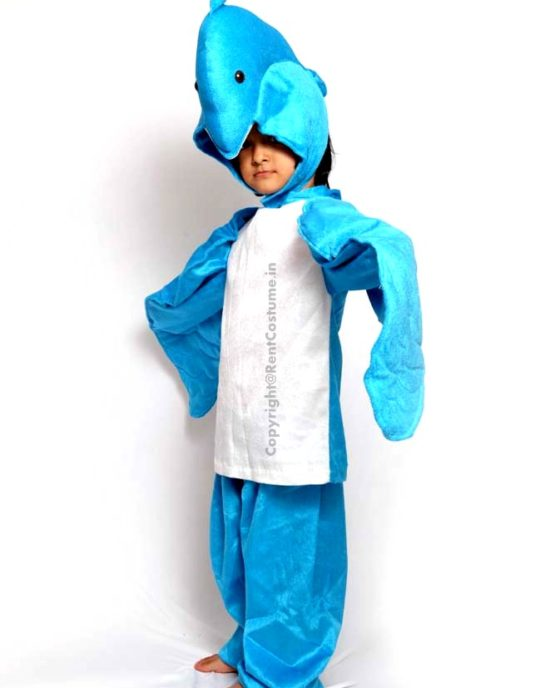 Dolphin-Fancy-Dress-for-Kids