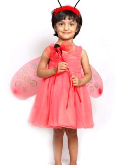 Butterfly-Fancy-Dress-for-Kids